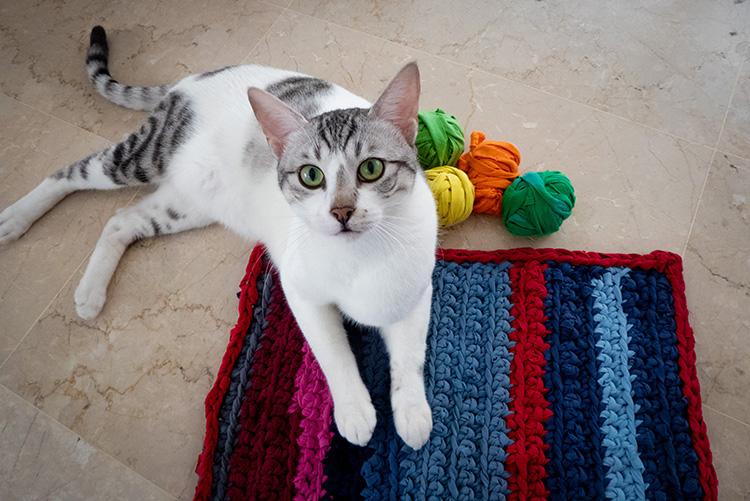 שטיחון לחתולים מחולצות טריקו